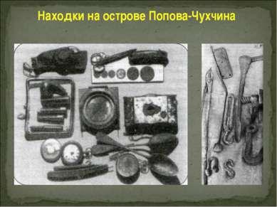 Находки на острове Попова-Чухчина