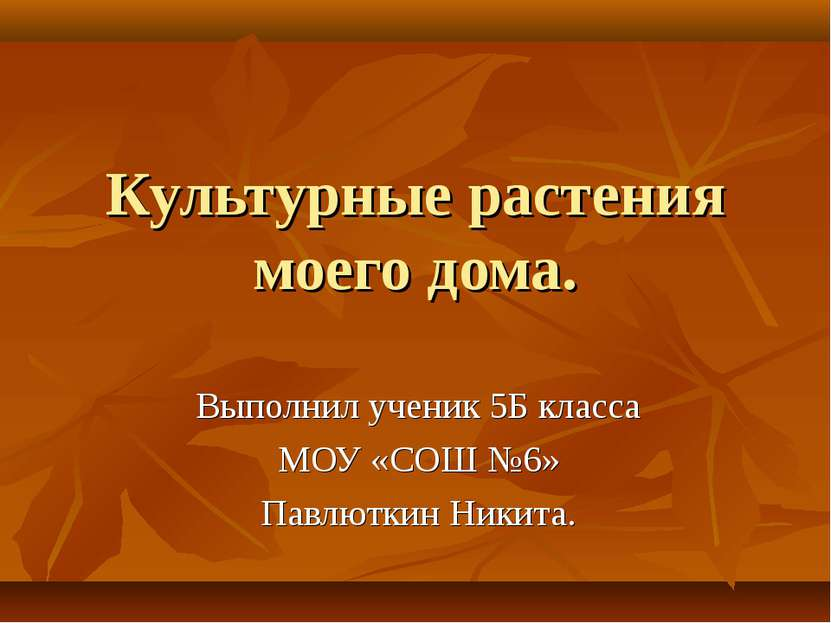 Культурные растения моего дома. Выполнил ученик 5Б класса МОУ «СОШ №6» Павлют...