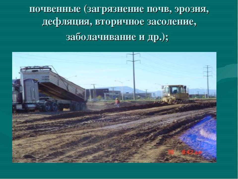 почвенные (загрязнение почв, эрозия, дефляция, вторичное засоление, заболачив...