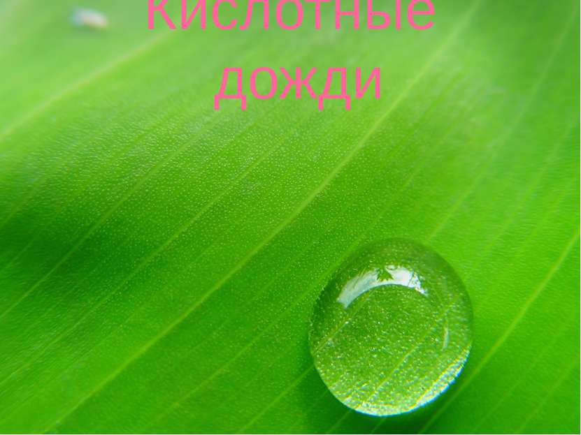 Кислотные дожди Prezentacii.com