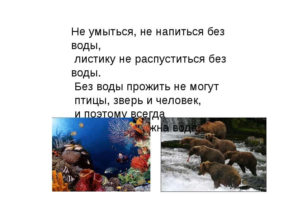Не умыться, не напиться без воды, листику не распуститься без воды. Без воды ...