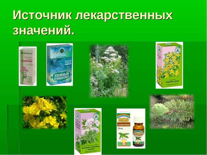 Источник лекарственных значений.