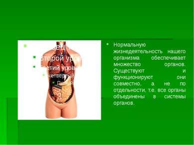 Нормальную жизнедеятельность нашего организма обеспечивает множество органов....