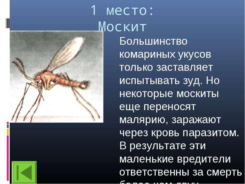 1 место: Москит Большинство комариных укусов только заставляет испытывать зуд...