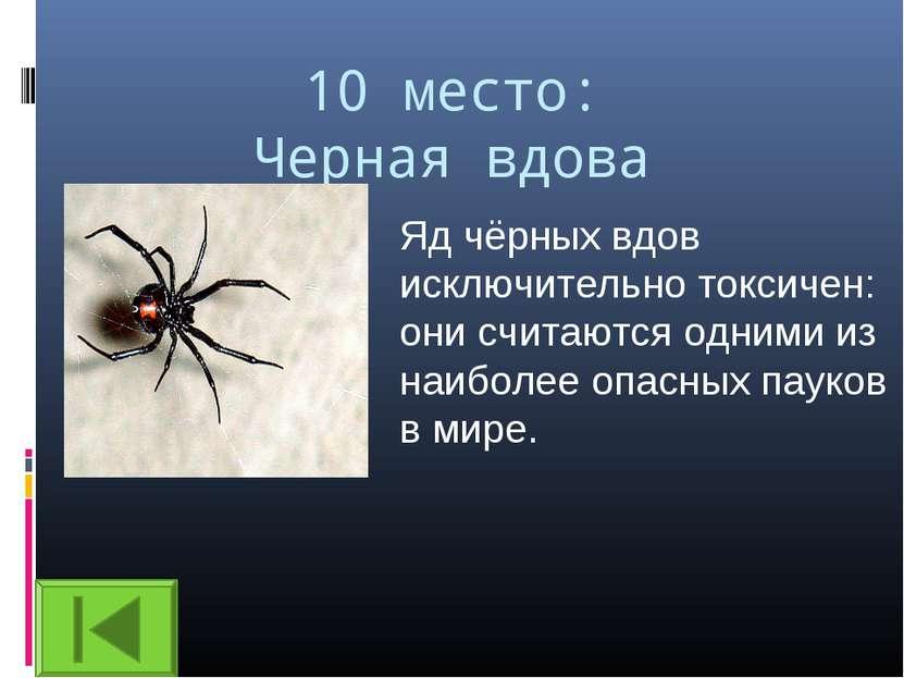 10 место: Черная вдова Яд чёрных вдов исключительно токсичен: они считаются о...