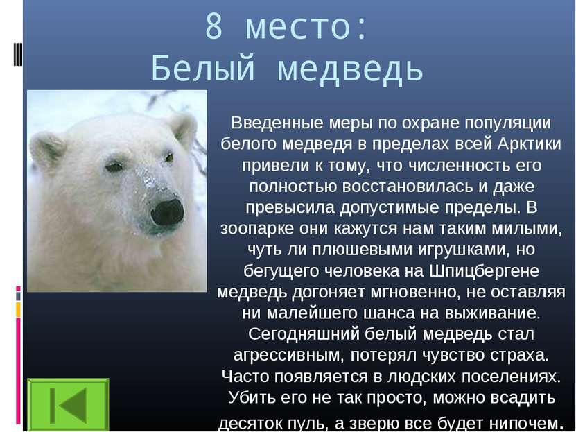 8 место: Белый медведь Введенные меры по охране популяции белого медведя в пр...