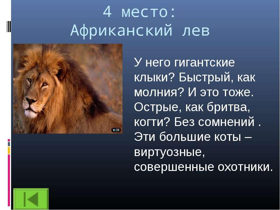 4 место: Африканский лев У него гигантские клыки? Быстрый, как молния? И это ...