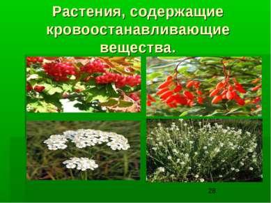 Растения, содержащие кровоостанавливающие вещества.