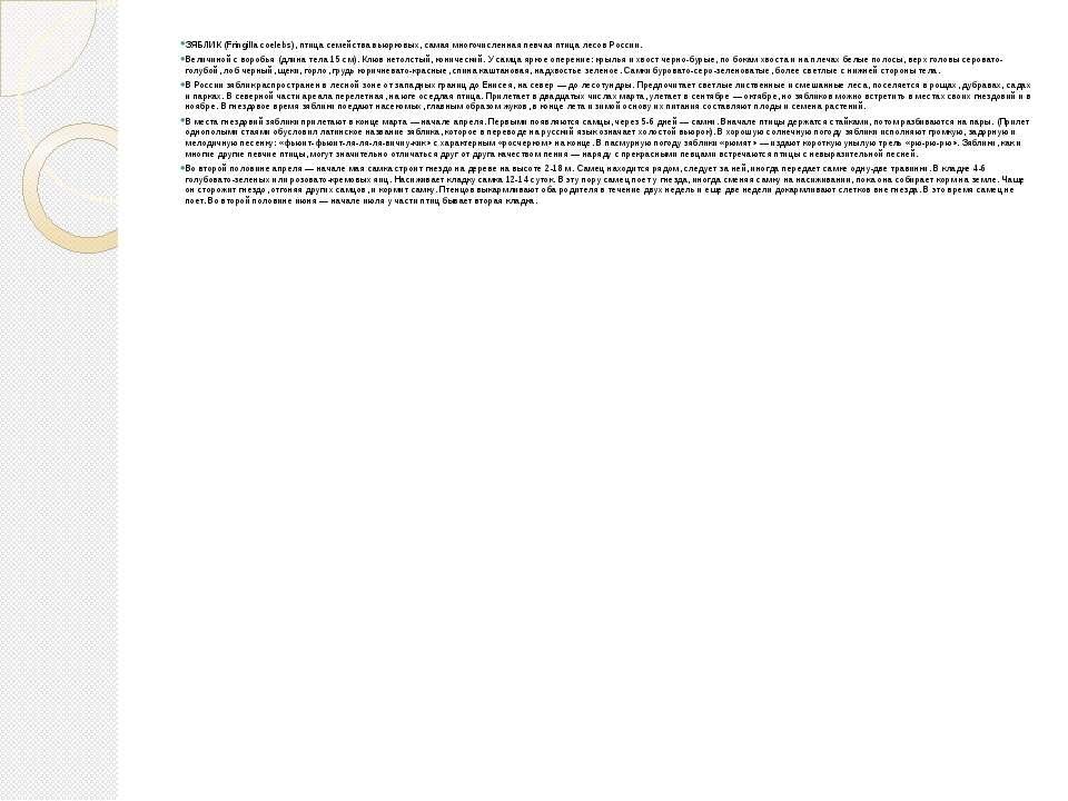 ЗЯБЛИК (Fringilla coelebs), птица семейства вьюрковых, самая многочисленная п...