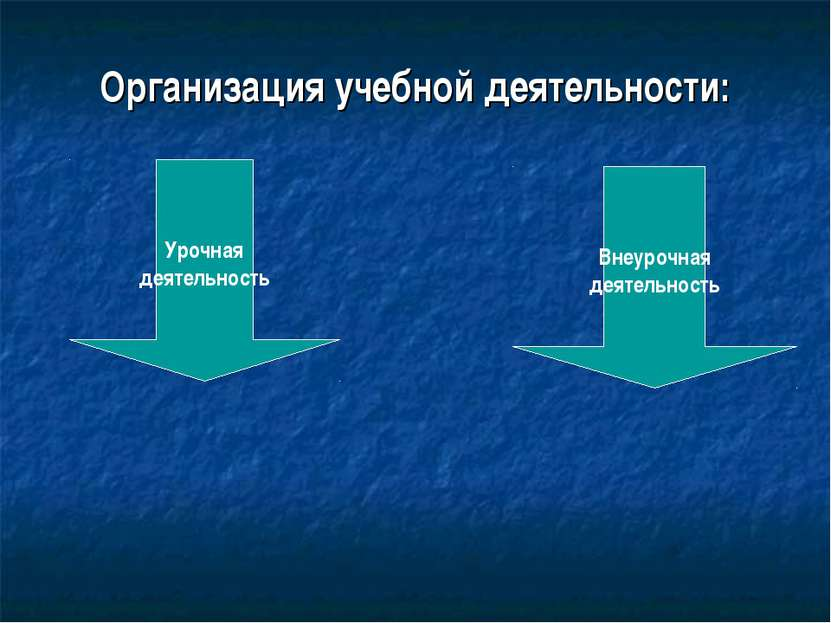 Организация учебной деятельности: Урочная деятельность Внеурочная деятельность