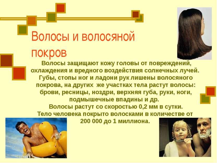 Волосы и волосяной покров Волосы защищают кожу головы от повреждений, охлажде...