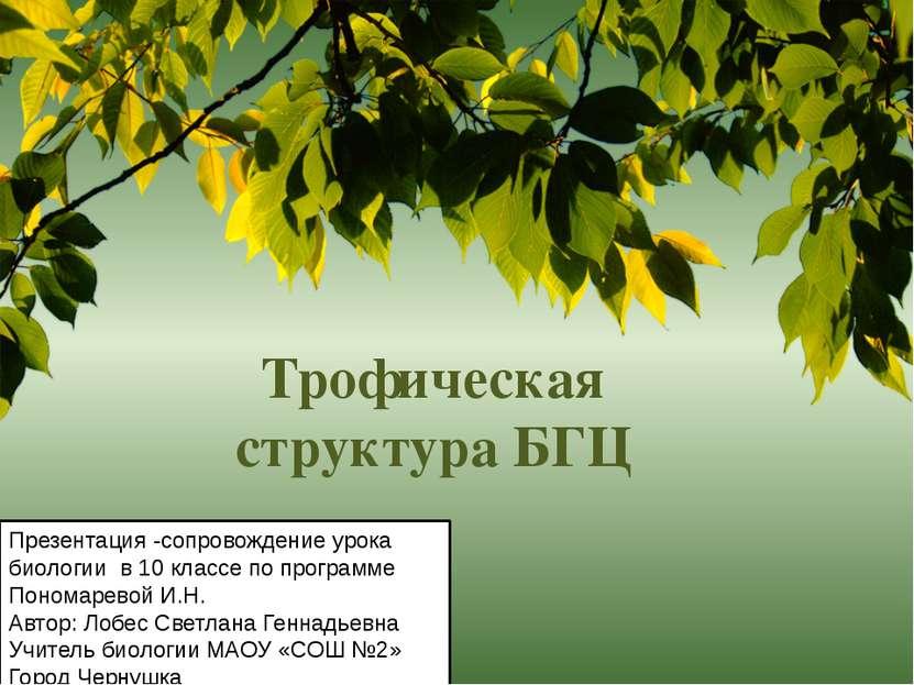 Трофическая структура БГЦ Презентация -сопровождение урока биологии в 10 клас...