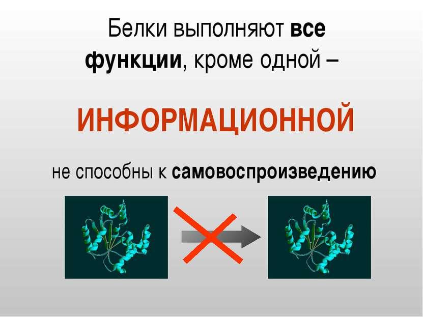 Белки выполняют все функции, кроме одной – ИНФОРМАЦИОННОЙ не способны к самов...
