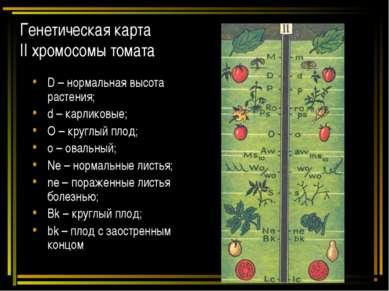 Генетическая карта II хромосомы томата D – нормальная высота растения; d – ка...