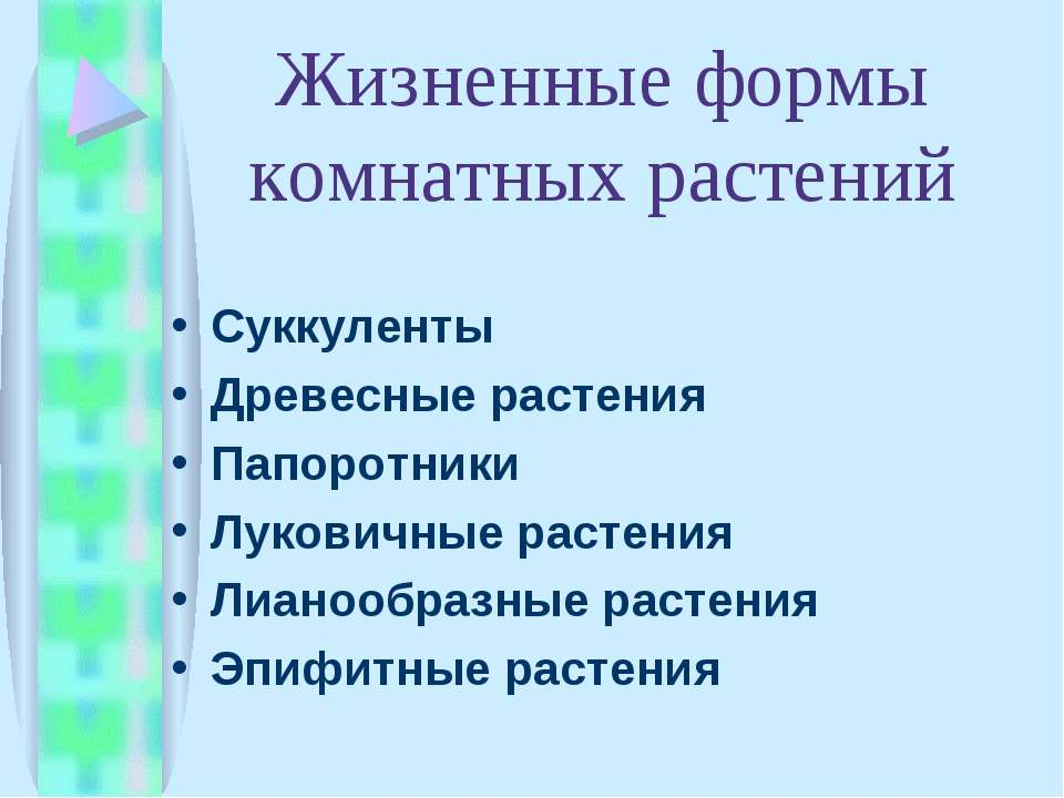 Жизненные формы комнатных растений Суккуленты Древесные растения Папоротники ...