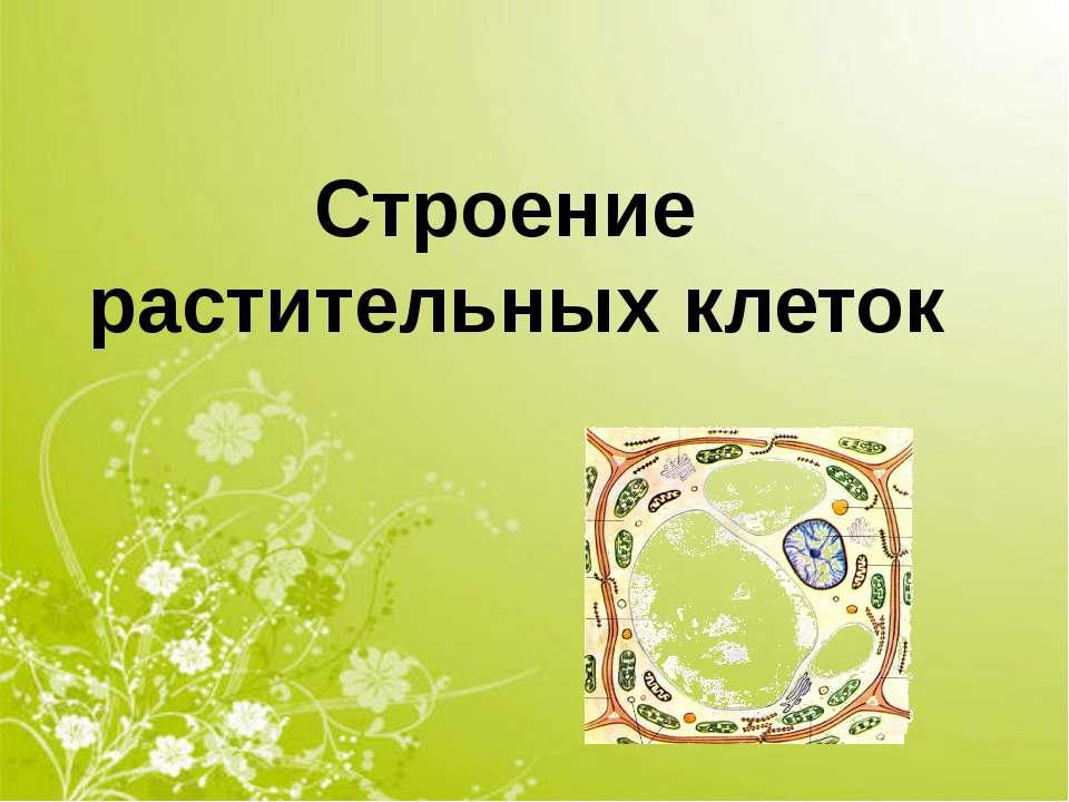 Строение растительных клеток