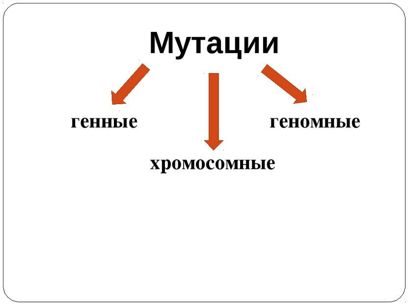 Мутации генные хромосомные геномные