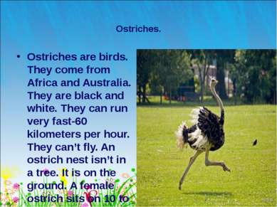 * Ostriches. Ostriches are birds. They come from Africa and Australia. They a...