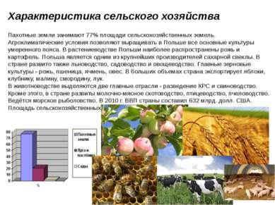 Характеристика сельского хозяйства Пахотные земли занимают 77% площади сельск...