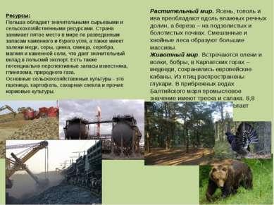 Ресурсы: Польша обладает значительными сырьевыми и сельскохозяйственными ресу...