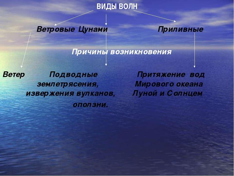 ВИДЫ ВОЛН Ветровые Цунами Приливные Причины возникновения Ветер Подводные При...
