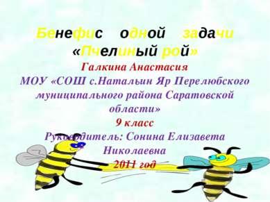 Бенефис одной задачи «Пчелиный рой» Галкина Анастасия МОУ «СОШ с.Натальин Яр ...