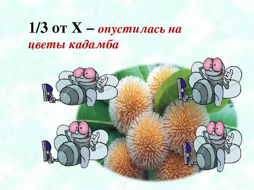 1/3 от X – опустилась на цветы кадамба