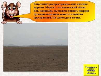В пустынях распространено одно явление: миражи. Мираж – это оптический обман....