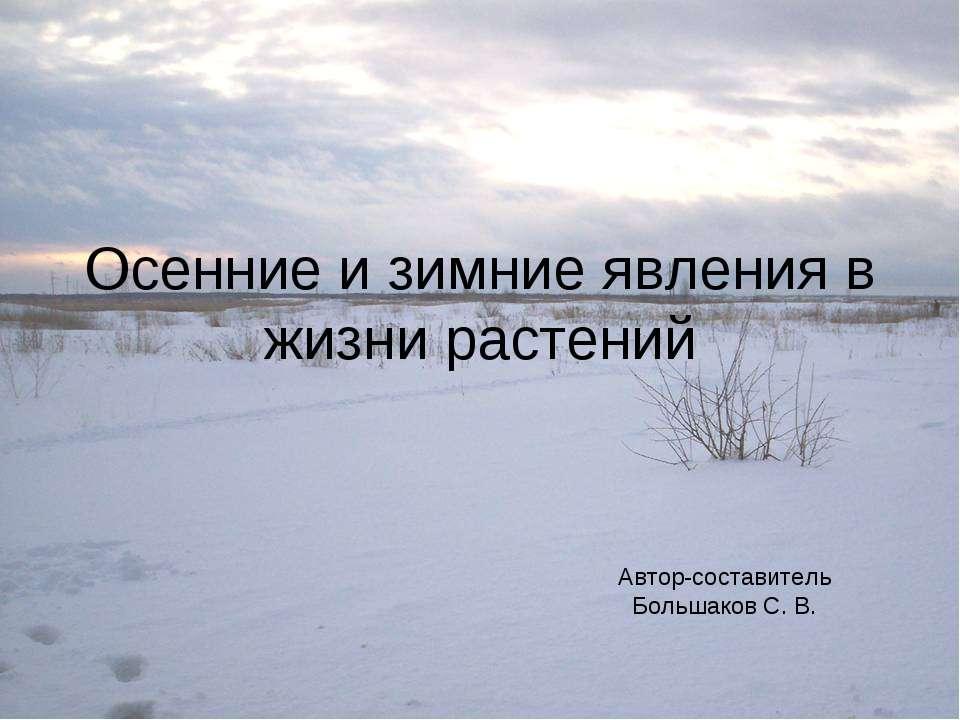 Осенние и зимние явления в жизни растений Автор-составитель Большаков С. В.
