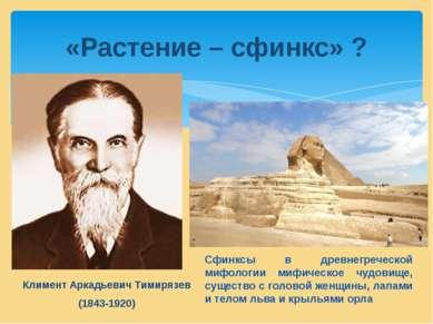 Климент Аркадьевич Тимирязев (1843-1920) «Растение – сфинкс» ? Сфинксы в древ...