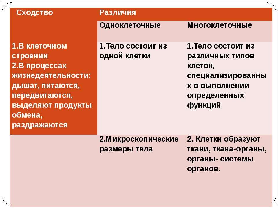 Сходство Различия Одноклеточные  Многоклеточные 1.В клеточном строении 2.В п...