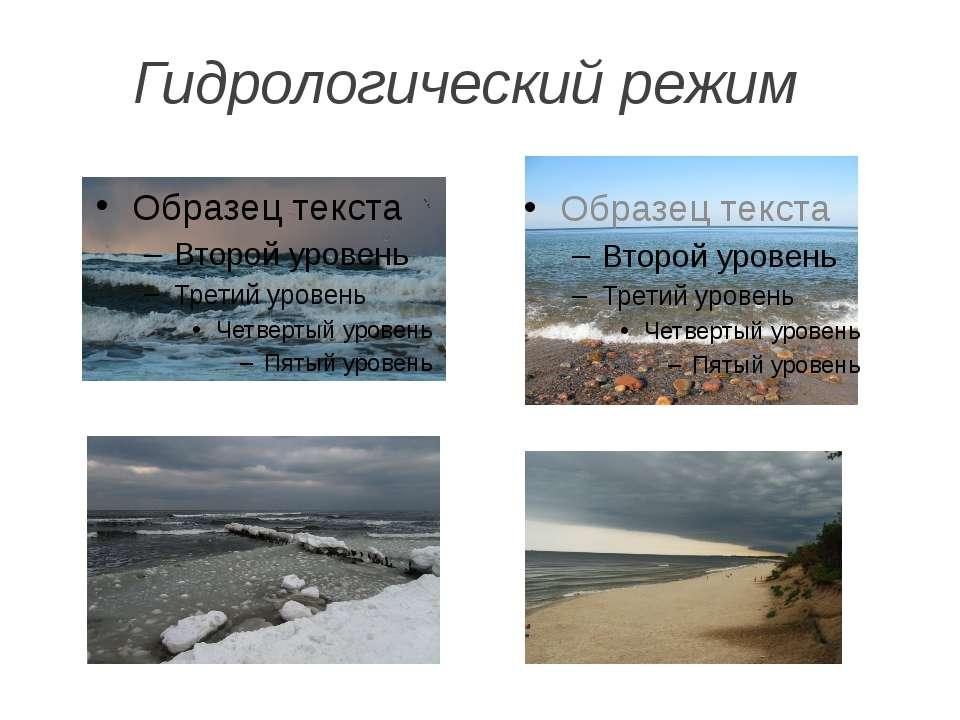 Гидрологический режим