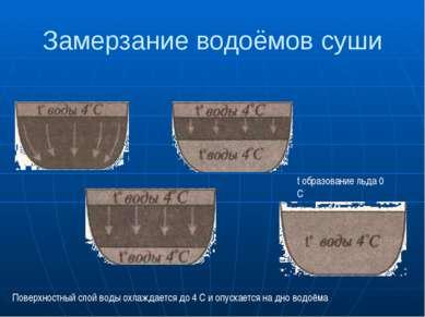Замерзание водоёмов суши t образование льда 0 С Поверхностный слой воды охлаж...