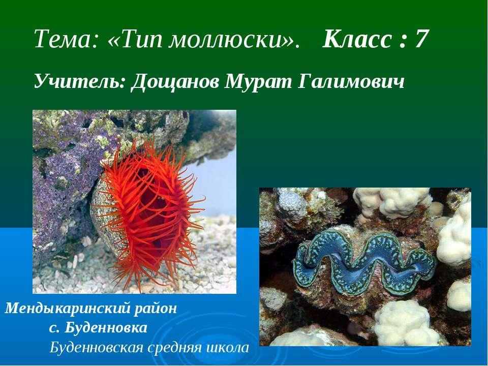 Тема: «Тип моллюски». Класс : 7 Учитель: Дощанов Мурат Галимович Мендыкаринск...