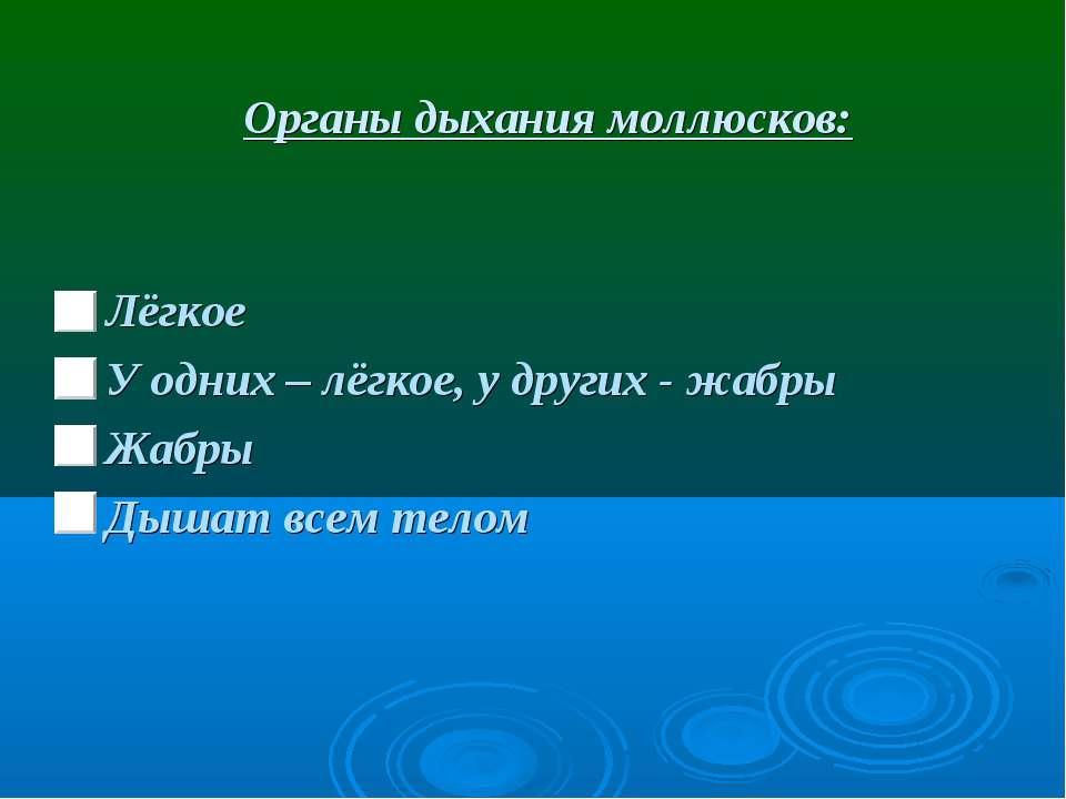 Органы дыхания моллюсков: Лёгкое У одних – лёгкое, у других - жабры Жабры Дыш...