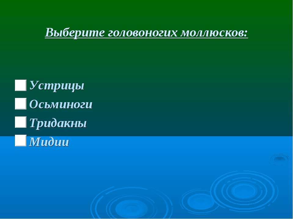 Выберите головоногих моллюсков: Устрицы Осьминоги Тридакны Мидии