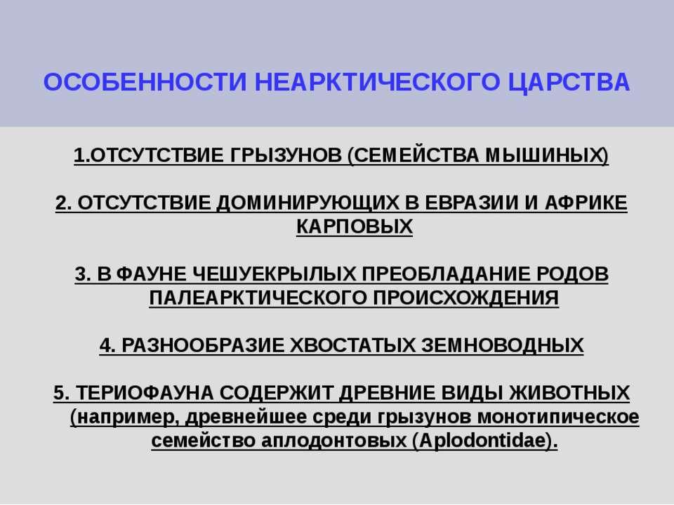 ОСОБЕННОСТИ НЕАРКТИЧЕСКОГО ЦАРСТВА 1.ОТСУТСТВИЕ ГРЫЗУНОВ (СЕМЕЙСТВА МЫШИНЫХ) ...
