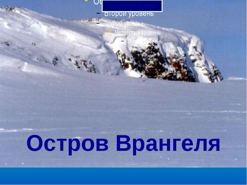 Остров Врангеля Prezentacii.com
