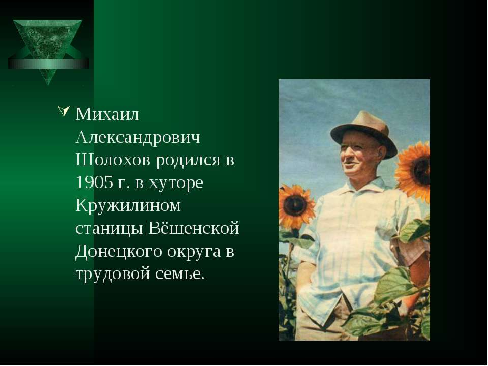 Михаил Александрович Шолохов родился в 1905 г. в хуторе Кружилином станицы Вё...