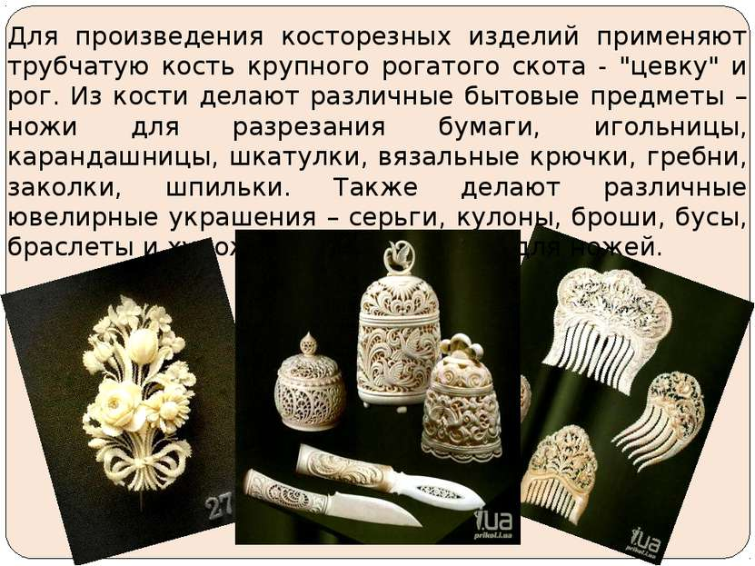 Для произведения косторезных изделий применяют трубчатую кость крупного рогат...