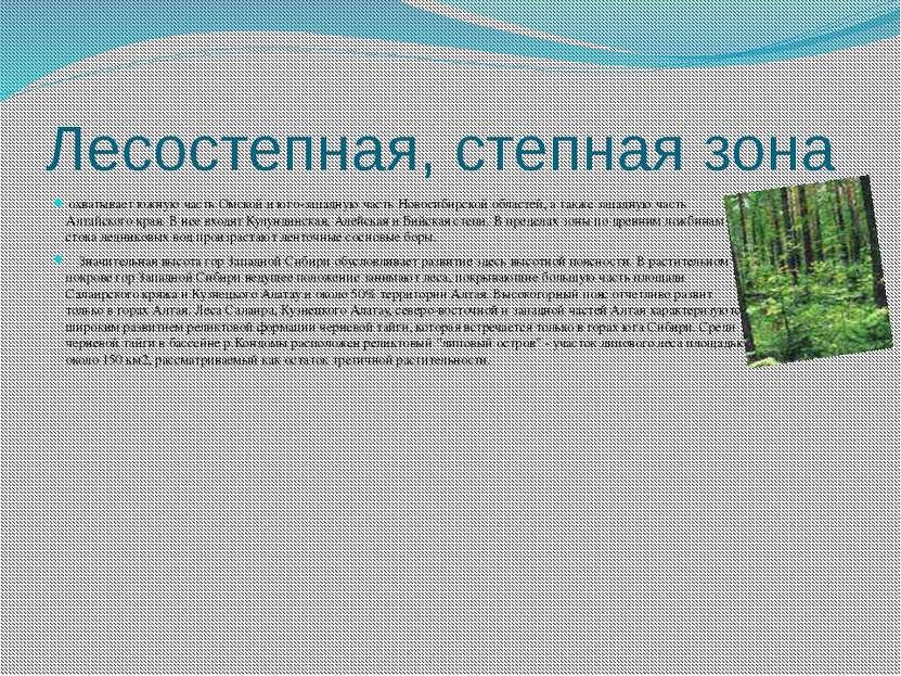 Лесостепная, степная зона охватывает южную часть Омской и юго-западную часть ...