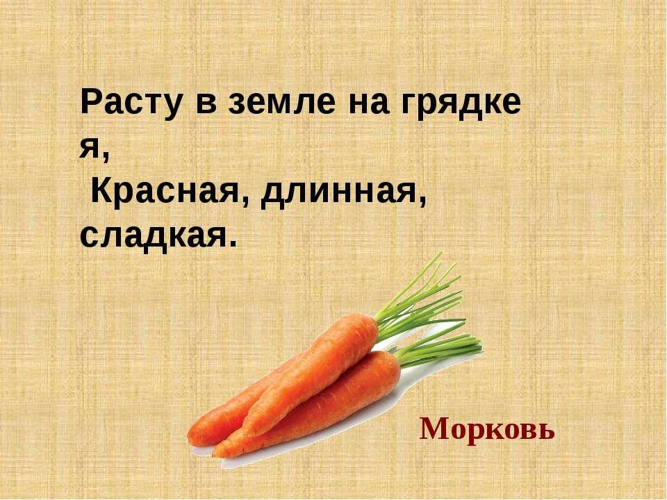 Расту в земле на грядке я, Красная, длинная, сладкая. Морковь