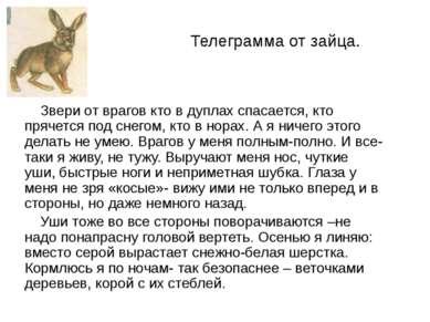 Телеграмма от зайца. Звери от врагов кто в дуплах спасается, кто прячется под...