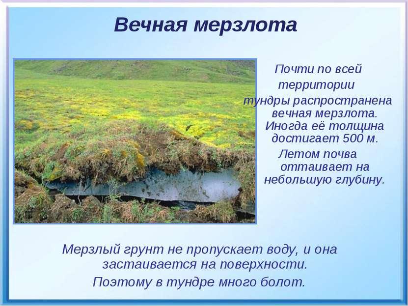 Мерзлый грунт не пропускает воду, и она застаивается на поверхности. Поэтому ...