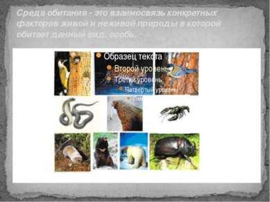Среда обитания - это взаимосвязь конкретных факторов живой и неживой природы ...