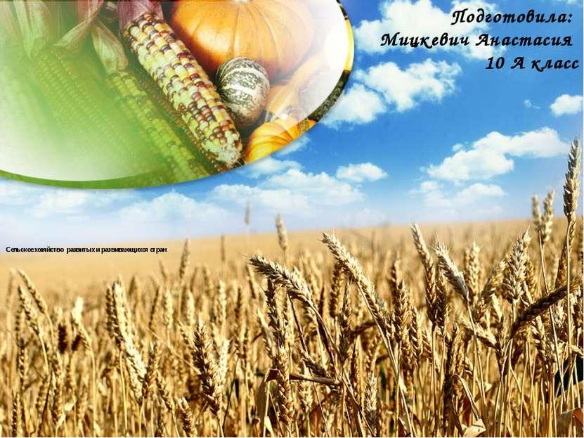 Состав агропромышленного комплекса Сельское хозяйство Животноводство Растение...