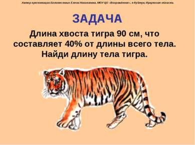 ЗАДАЧА Длина хвоста тигра 90 см, что составляет 40% от длины всего тела. Найд...