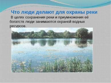 Что люди делают для охраны реки В целях сохранения реки и приумножения её бог...