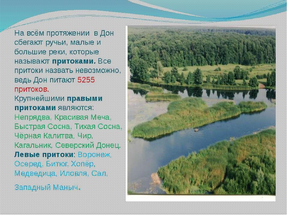 На всём протяжении в Дон сбегают ручьи, малые и большие реки, которые называю...