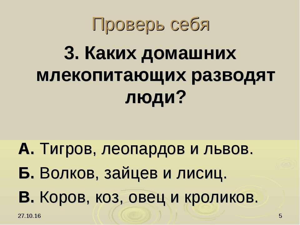 * * Проверь себя 3. Каких домашних млекопитающих разводят люди? А. Тигров, ле...